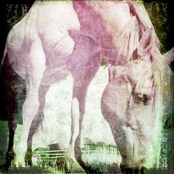pink - image #382411 gratis