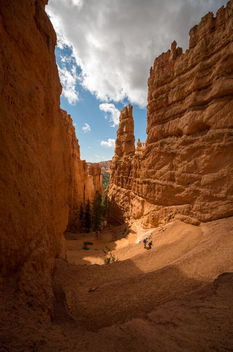 bryce canyon III (USA) - бесплатный image #391601
