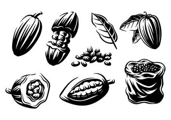Cocoa Beans Engraving Vector - бесплатный vector #393181