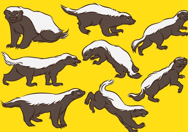 Honey Badger Cartoon - Free vector #393611