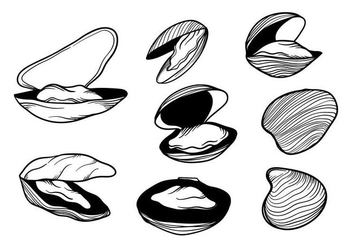 Free Hand Drawn Mussel Vector - Kostenloses vector #393991