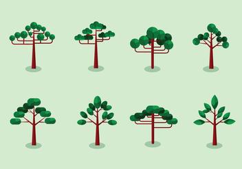 Araucaria trees flat design - Free vector #396431