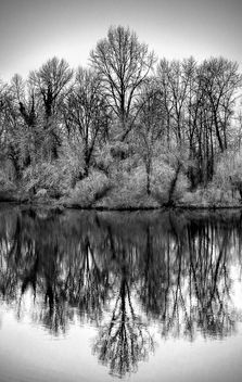 Reflection - image gratuit(e) #399581