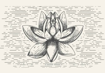 Free Vector Flower Illustration - Free vector #399791