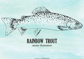Free Vector Rainbow Trout - Free vector #403721
