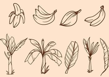 Free Hand Drawn Banana Tree Vector - vector #406051 gratis