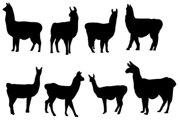 Free Silhouette Llama Vector - Free vector #406061
