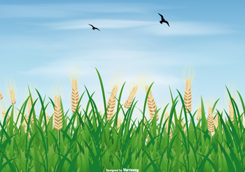 Rice Field Illustration - vector gratuit #406321