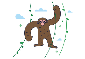 Free Monkey Vector - Free vector #406921