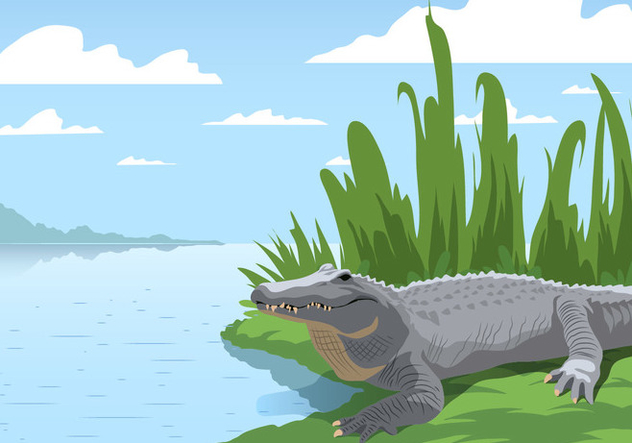 Gator At The Swamp - Free vector #407711