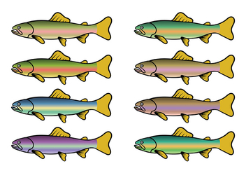 Rainbow Trout Fish Vector - Free vector #408581