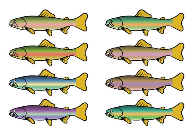 Rainbow Trout Fish Vector - Free vector #408581