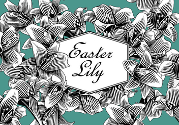 Easter Lily Free Vector - vector #410581 gratis