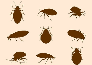Free Bed Bug Vector - Free vector #410961