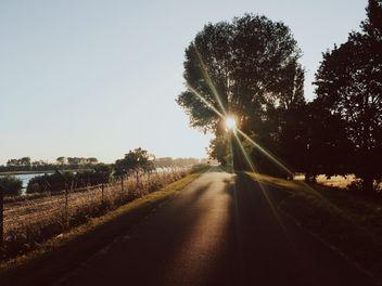 Sunset - Free image #411891