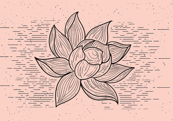 Free Detailed Vector Flower - Kostenloses vector #412561