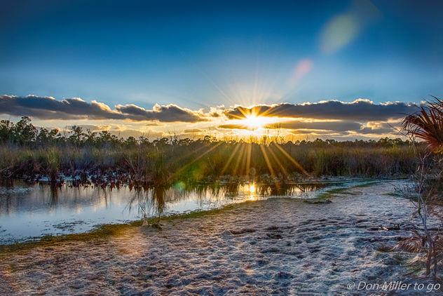 Florida Sunset - image gratuit #413281