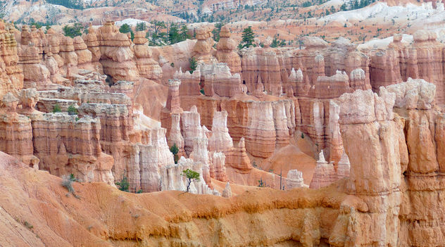 Hoodoos. Bryces Canyon Utah. - Free image #414021