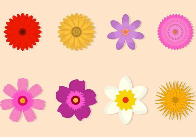 Free Flower Vector Collection - vector gratuit #421091