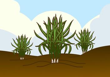 Wild Lemongrass Plant Vector - Kostenloses vector #426261