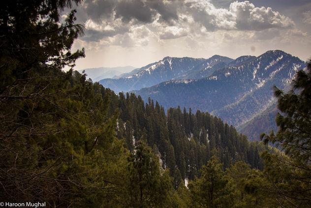 Nathiya gali, Pakistan - Kostenloses image #427021