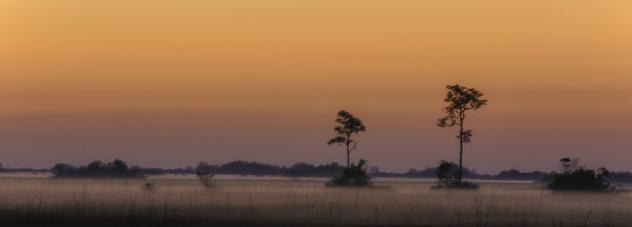 Everglades Sunrise - image #427181 gratis