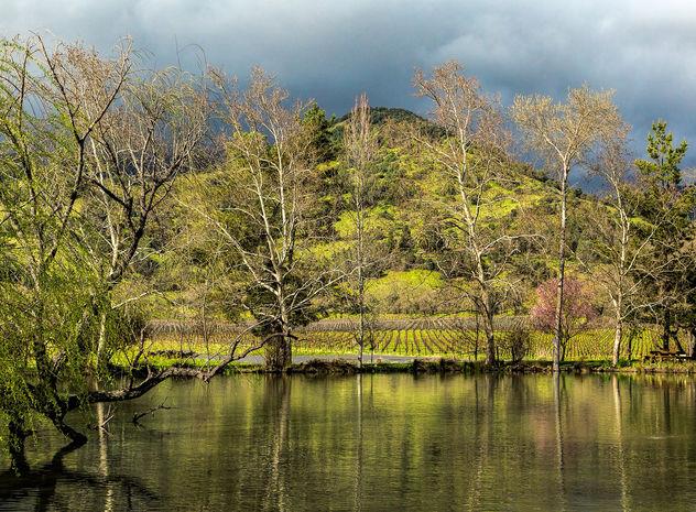 Spring in Napa Valley - image #427911 gratis