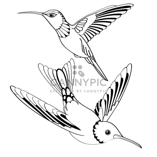 Vector illustration of black birds on white background - Free vector #127241