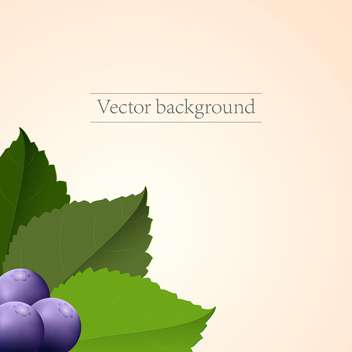 Vector ripe blueberries on pink background - vector gratuit #127631