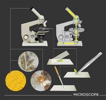 molecular biology science icons - vector gratuit #133401
