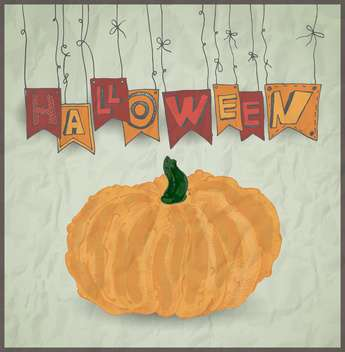 halloween holiday pumpkin on grey background - vector gratuit #135261
