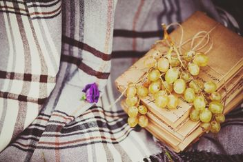 Grapes and books on checkered plaid - image #136201 gratis
