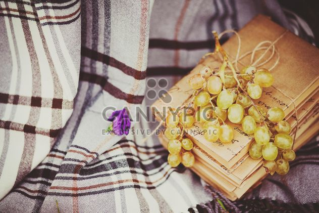 Grapes and books on checkered plaid - Free image #136201