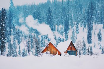 Wooden houses in winter forest - бесплатный image #136381
