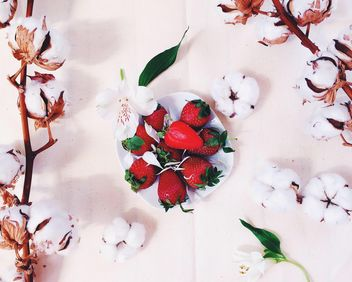 Strawberries and cotton flowers - image gratuit #136571