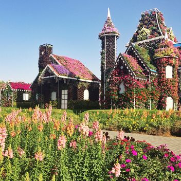 Flower Park in Dubai, United Arab Emirates - бесплатный image #136691