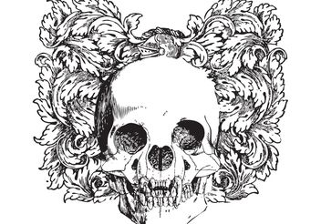 Floral skull vector illustration - vector gratuit #139181