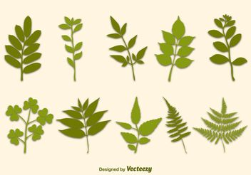 Vector Branches - Free vector #145531