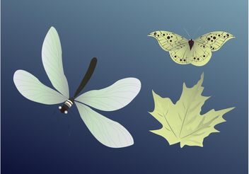 Insects And Leaf - vector gratuit #145681