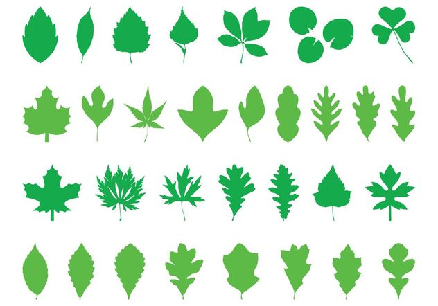 Leaves Silhouettes Pack - vector gratuit #145981