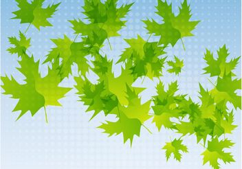 Fresh Leaves - vector gratuit #146101