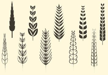 Sketchy and Solid Cereal and Wheat Vectors - vector gratuit #147011