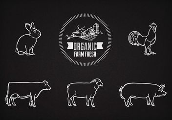 Free Vector Farm Animals On Chalkboard - Free vector #147681