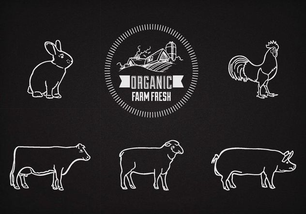 Free Vector Farm Animals On Chalkboard - Kostenloses vector #147681