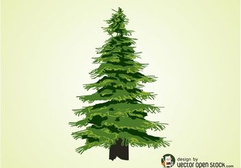 Evergreen Tree Vector - Free vector #152871
