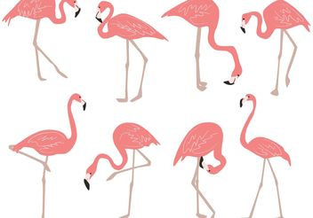 Hand Drawn Flamingo Vectors - vector gratuit #156651