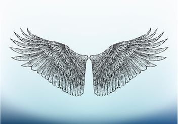 Bird Wings Image - бесплатный vector #156841