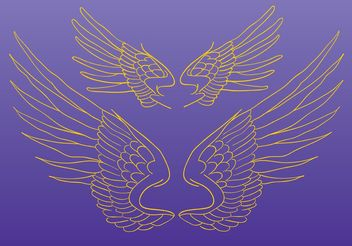 Wings Vector Drawing - vector gratuit #157381