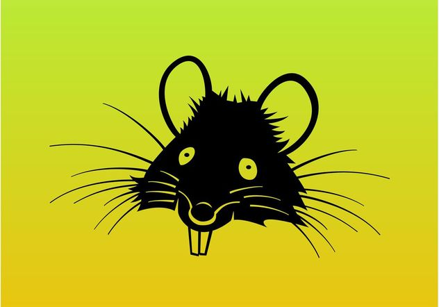 Ratte-Cartoon-Vektor - Kostenloses vector #157501