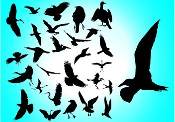 Flying Birds - Free vector #157701